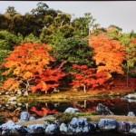 Autumn Colors-0-2013